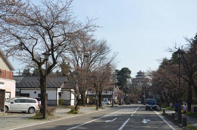 鶴ヶ城 北出丸通りの桜04_0401